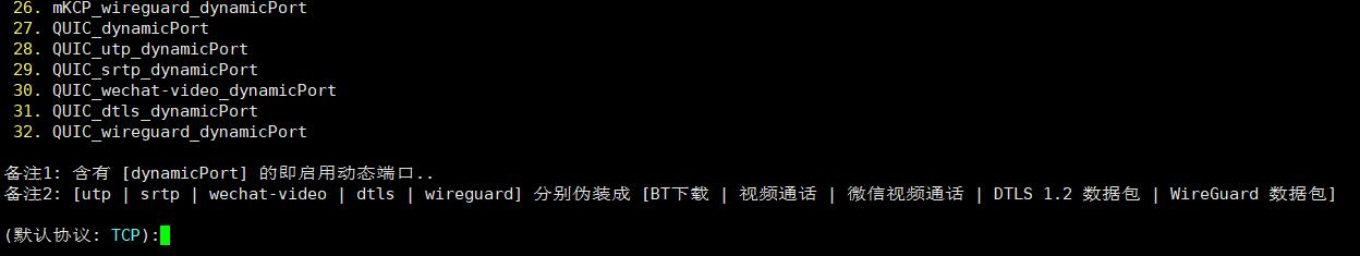 VPS搭建VPN教程2019-V2ray教程【图文】 - VPS大地